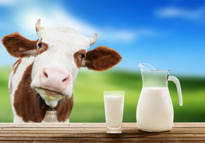 cow-milk  Όλη η αλήθεια γύρω από τα γάλατα της αγοράς cow milk