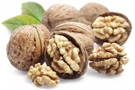 καφετζόπουλος διατροφή διατροφική αξία καρυδιών Τα καρύδια στο μικροσκόπιο